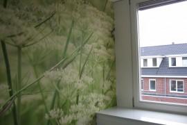Fotobehang plakken – Amstelveen Appartement